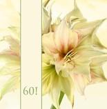 Einladungskarten Diamantene Hochzeit   Hochzeitseinladung Einladung  Diamantene Hochzeit Jb1908082, Vk